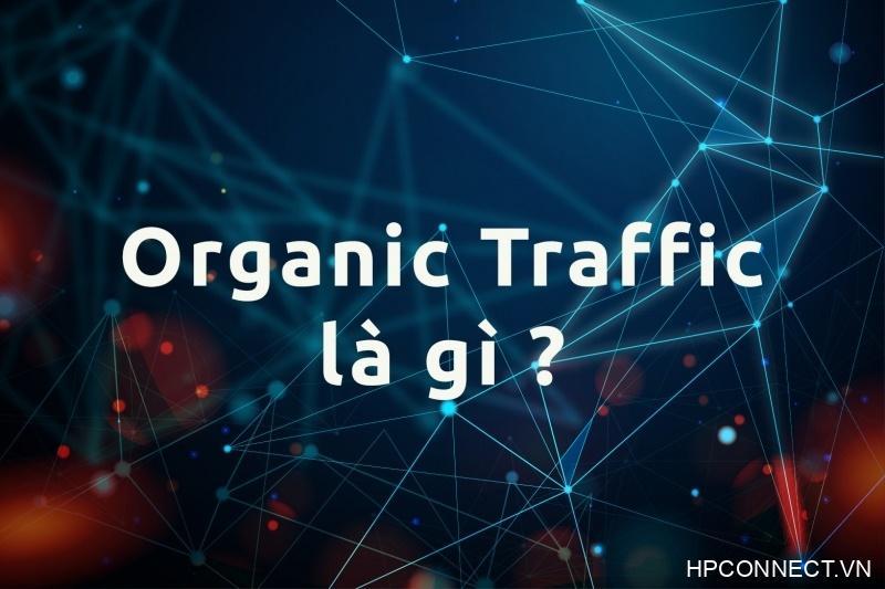 organic-traffic-la-gi